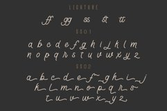 Lostown Monoline Script Product Image 5