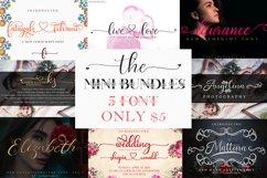 Mini Bundles 5 font script only $5 Product Image 1