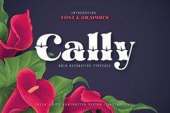 Cally Font & Graphics Product Image 1