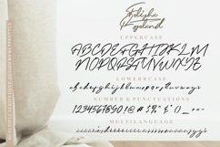 Felisha Roseland Script Font Product Image 2