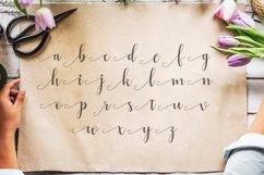 Alyshia Script Product Image 3