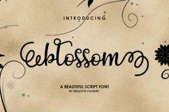 Blossom Script Product Image 1