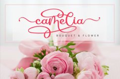 Samerville - Bouncy Calligraphy Font Product Image 6