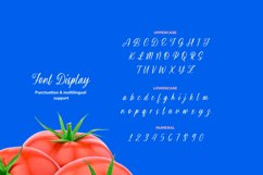 Brisyan Font Product Image 3