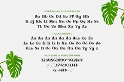 Green Core Font Product Image 5