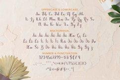 The Shrine Font Product Image 5