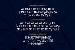 Oblique Font Product Image 3