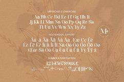 Maxleon Font Product Image 5