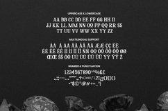 Meyrina Font Product Image 4