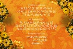 Dutamisxa Font Product Image 5