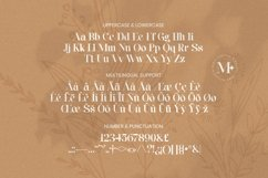 Web Font Maxleon Product Image 5