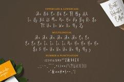Malavika Font Product Image 2