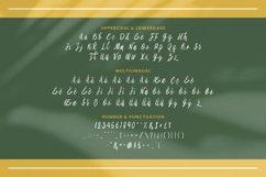 Aliya Font Product Image 4