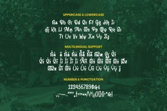 Jameer Font Product Image 5