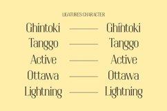Changdu - A Modern Serif Font Product Image 3
