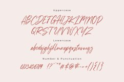 Sussane - Two Style Calligraphy Font Product Image 3