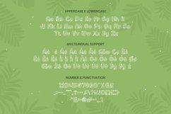 Boyco Font Product Image 2