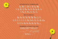 Splashorea Font Product Image 5