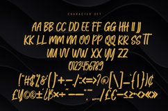 Qufiky Handwritten Display Font Product Image 5