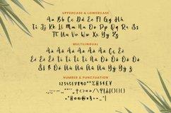 Basilia Font Product Image 5