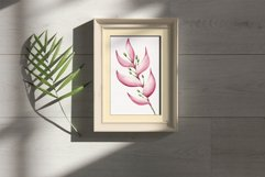"""Watercolor ClipArt """"Tropical Flowers Product Image 6"""