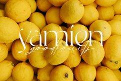Rallisaguen - Modern Serif Typeface Product Image 6