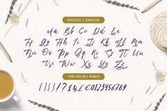Lavender Font Product Image 3