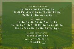 Balinestle Font Product Image 5