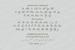 Broffina Font Product Image 4