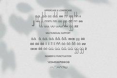 Ladadida Font Product Image 4