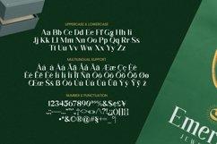 Alzelvin Font Product Image 4