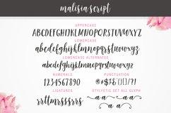 Malisia Script Product Image 2