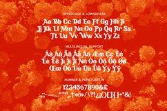 Zephyr Font Product Image 5