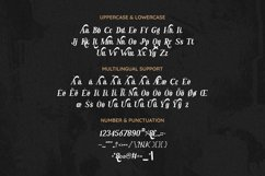 Reinsleif Font Product Image 2