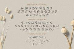 Dogueta Font Product Image 5
