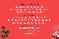 Slicer Font Product Image 5