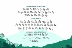 Charlise Font Product Image 2