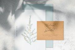 Niathory - Modern Calligraphy Font Product Image 5