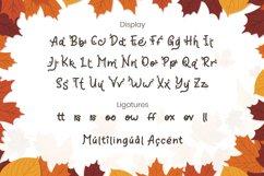 Orange Leafy - Autumn Display Font Product Image 5