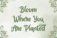 Garden Bloom - Hand Drawn Font Product Image 5