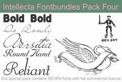 Intellecta Fontbundles Pack Four Product Image 1