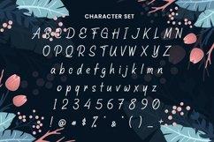 Web Font Dianthus Product Image 3