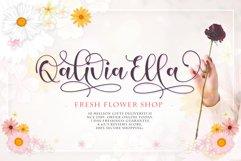 Aliefba script Product Image 4