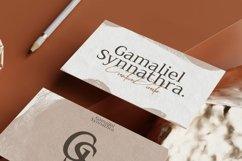 Web Font Seriola Product Image 3