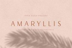 Amaryllis Sans Product Image 1