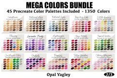 Procreate Color Palette Bundle -MEGA Pack 1350 Colors Product Image 3