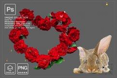 Photoshop overlay Easter bunny overlay Product Image 2