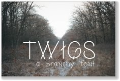 Twigs A Branchy Font Product Image 1