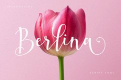 Berlina Script Product Image 1