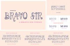 The Elegant Font Bundle - Vol 02 Product Image 6